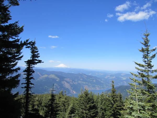 Mt. Adams from Mt. Defiance Trail 413 Picture taken by Joel Bornzin