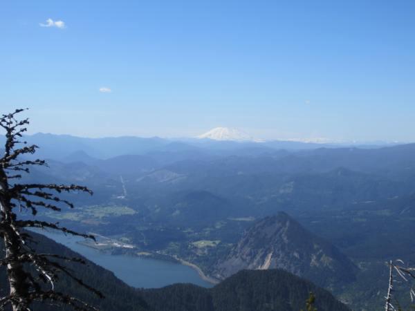 Mt. St. Helens from Mt. Defiance Trail 413 Picture taken by Joel Bornzin
