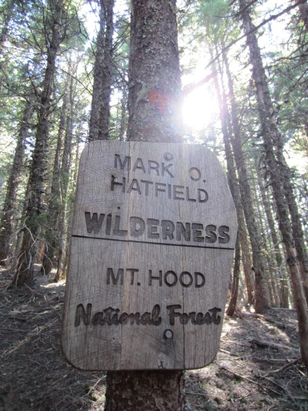 Mt Defiance Trail 413 Mark O. Hatfield Wilderness Sign Picture taken by Joel Bornzin