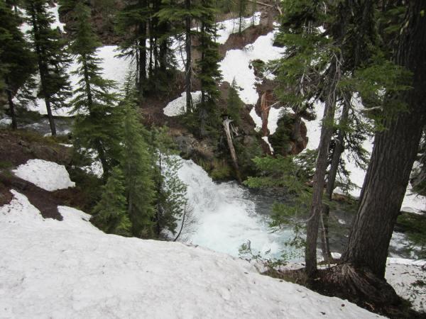 Three Sisters Wilderness Forest Waterfall Picture Taken by Joel Bornzin