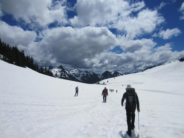 Hiking in Rainier National Park Picture Taken by Joel Bornzin