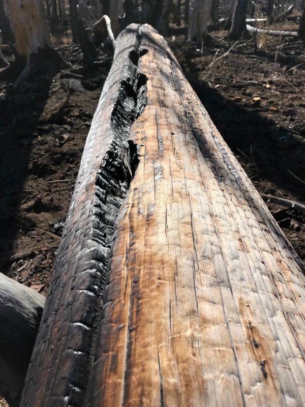 Burn Log