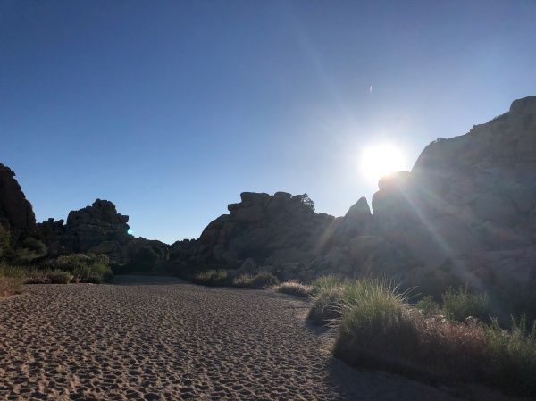 Evening on the Boy Scout Trail to Willow Hole - Wonderland of Rocks - May 2019